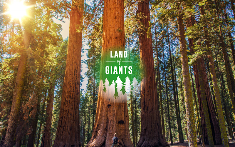 Human Impact on the Environment - Land of Giants Image