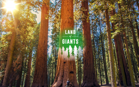 Human Impact on the Environment - Land of Giants