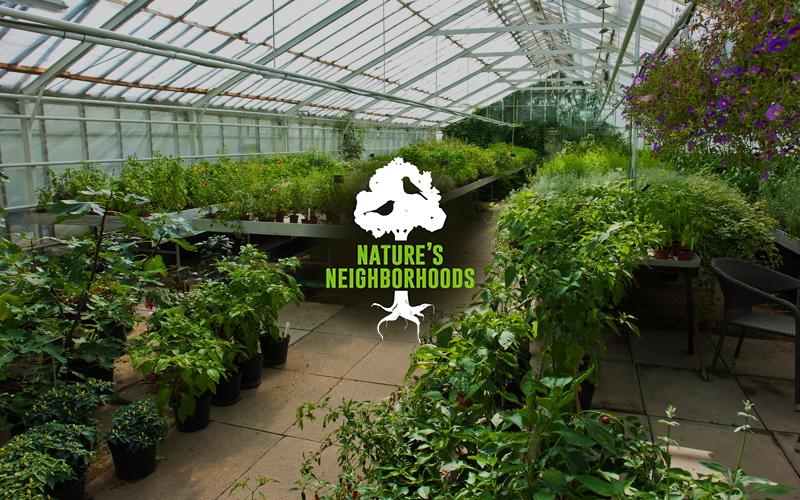 Ecosystems - Nature's Neighborhoods Image
