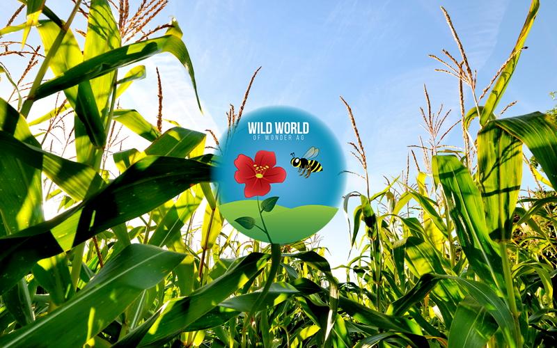 Animal & Plant Biotechnology - Wild World Of Wonder AG Image